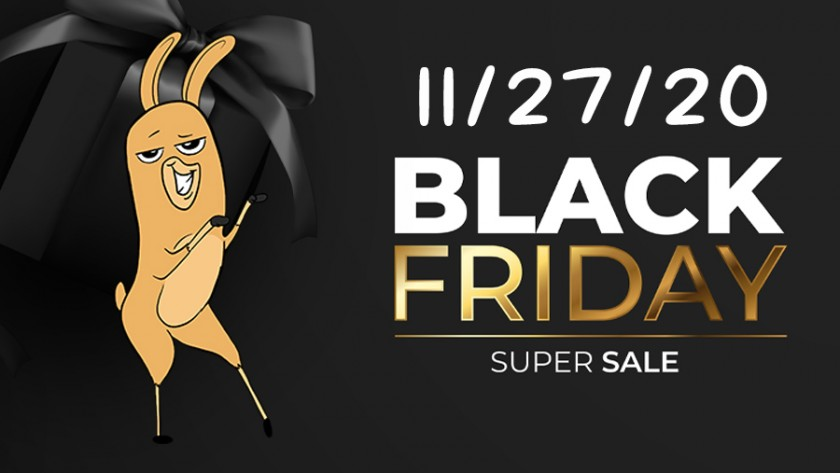 Black Friday Sales 11/27/20