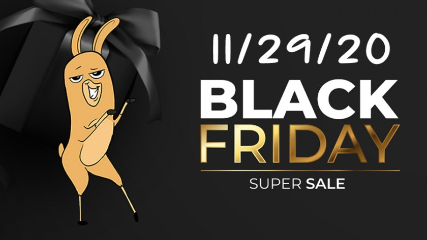 BLACK FRIDAY SALES 11/29/20