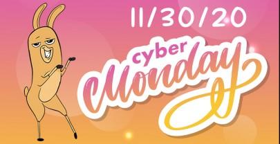 CYBER MONDAY SALES 11/30/20